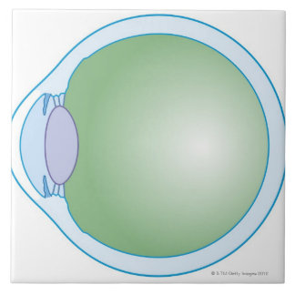 Illustration of Human Eye Tile