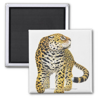 Illustration of Jaguar with head in profile Square Magnet