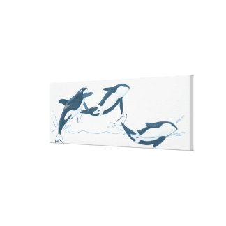 Illustration of Killer Whales (Orcinus orca) Canvas Print