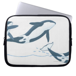Illustration of Killer Whales (Orcinus orca) Laptop Sleeve