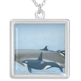 Illustration of Killer Whales working in a group Silver Plated Necklace