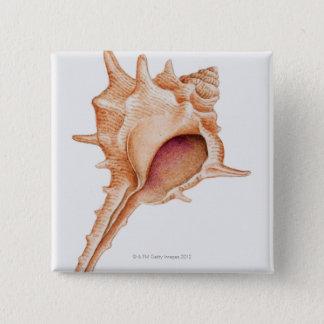 Illustration of Murex shell 15 Cm Square Badge