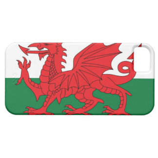 Illustration of national flag of Wales, with red iPhone 5 Case