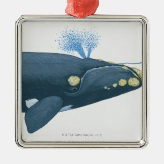Illustration of North Pacific Right Whale Christmas Ornament