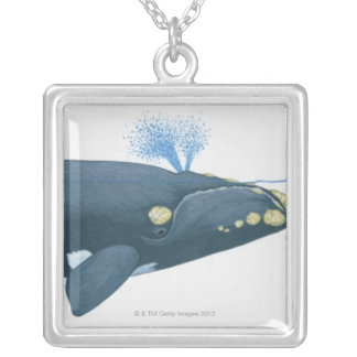 Illustration of North Pacific Right Whale Silver Plated Necklace