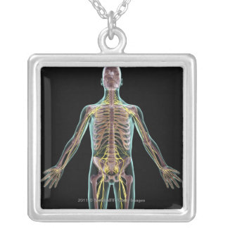 Illustration of the nervous system silver plated necklace