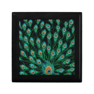Illustration With Peacock Feathers on Black Gift Box