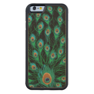 Illustration With Peacock Feathers on Black Maple iPhone 6 Bumper Case
