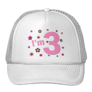 """""""I'm 3"""" Pink & Brown Flowers Hats"""