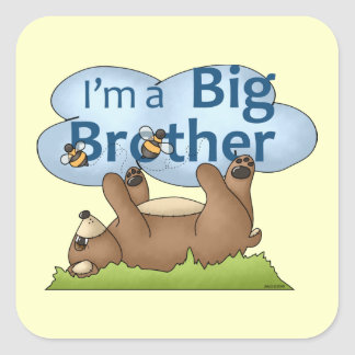 I'm a Big Brother bear Stickers