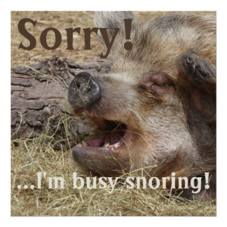 I'm Busy Snoring Wild Boar Poster