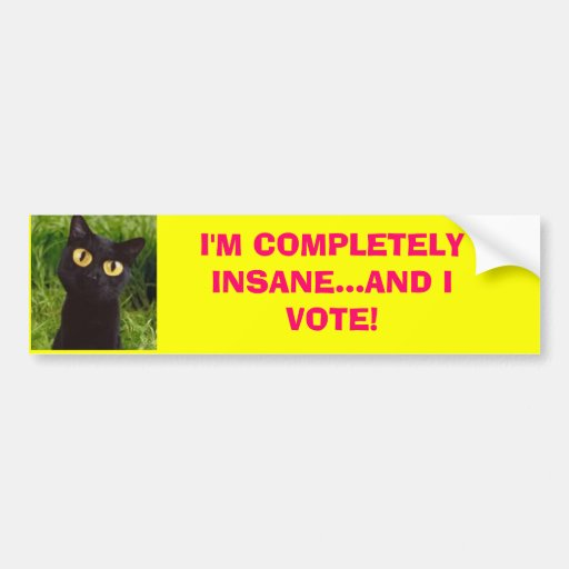 I'M COMPLETELY INSANE...AND I VOTE! Bumpersticker Bumper Stickers