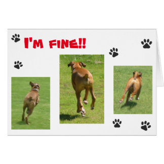 """I'm fine!!"" Note cards"