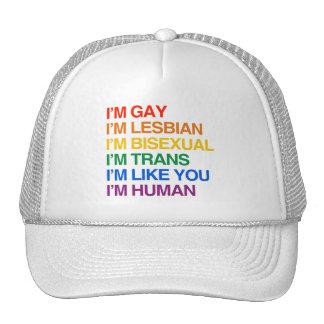 I'M GLBT I'M HUMAN CAP