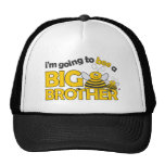 I'm Going to BEE a Big Brother T-shirt