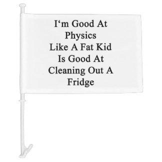 I'm Good At Physics Like A Fat Kid Is Good At Clea Car Flag