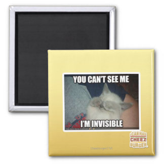 I'm Invisible Magnet
