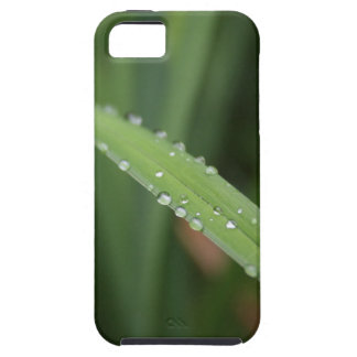 I'm just a blade of grass in the dew iPhone 5 cases