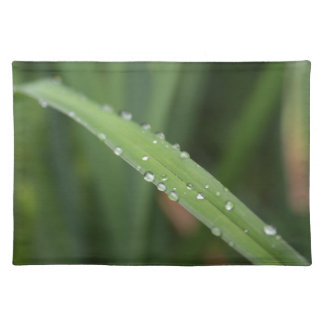 I'm just a blade of grass in the dew placemat