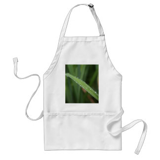I'm just a blade of grass in the dew standard apron