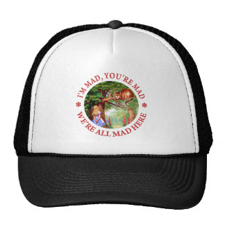I'm Mad , You're Mad, We;'re All Mad Here! Mesh Hats