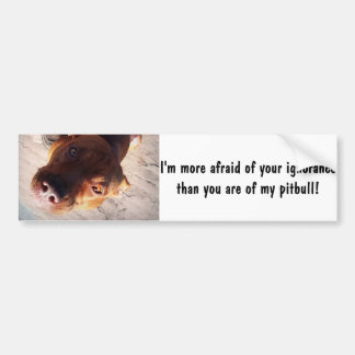 I'm more afraid of your ignorance bumper stickers