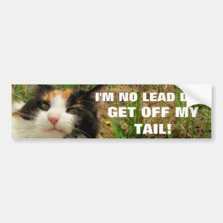 I'm No Lead Dog Cat Meme Bumper Sticker