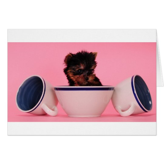 I'm not a Tea Cup Poodle! Card