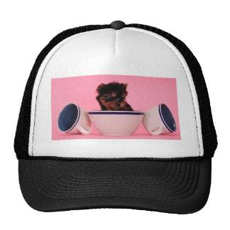 I'm not a Tea Cup Poodle! Mesh Hats