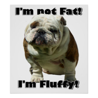 I'm not fat bulldog poster