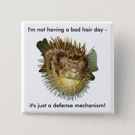 I'm not having a bad hair day -