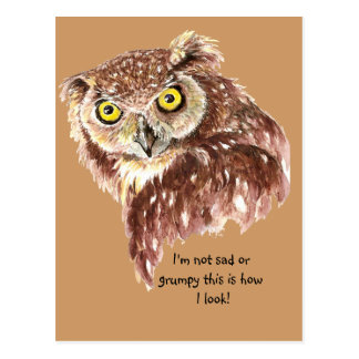 I'm not sad or grumpy this is how I look Owl Postcard