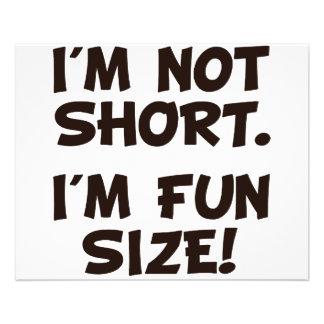 I'm Not Short I'm Fun Size 11.5 Cm X 14 Cm Flyer
