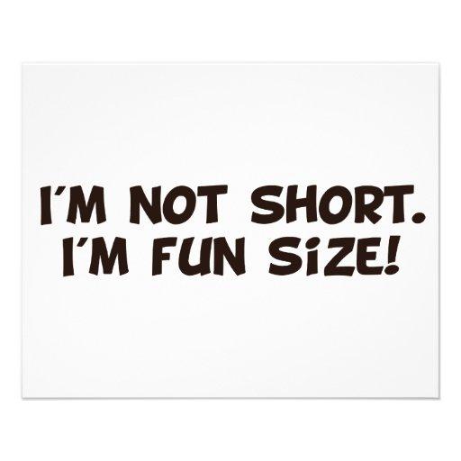 I'm Not Short I'm Fun Size Flyers