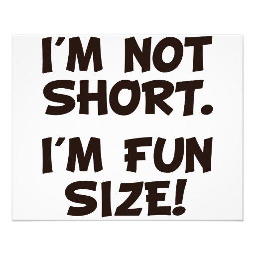 I'm Not Short I'm Fun Size Custom Flyer