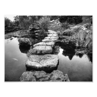 I'm Not Your Stepping Stone Photo Art