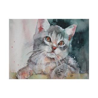 I'm Purrr-fect. Small Kitten Canvas Print