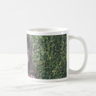 I'm sexy and I know it Coffee Mug