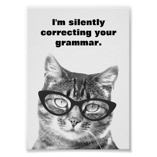 I'm silently correcting your grammar cat poster