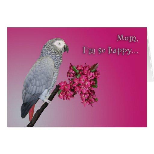 I'm So Happy Cards