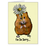 I'm So Sorry, Cute Hamster with Big Daisy, Apology