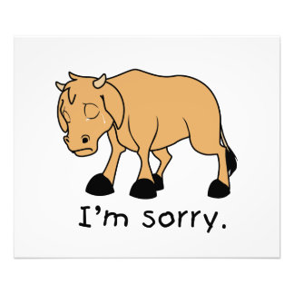 I'm Sorry Brown Crying Sad Weeping Calf Card Stamp Photographic Print