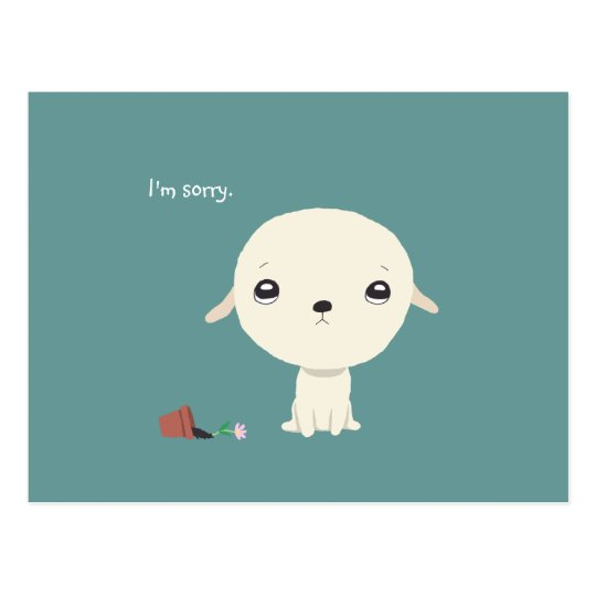 I'm Sorry Card Cute Puppy Eyes Sorry Postcard
