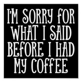 I'm Sorry For What I Said B&W Funny Quote Poster