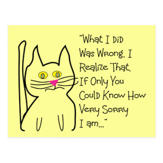 """I'm Sorry"" Greeting Cards--Cat Design Postcard"