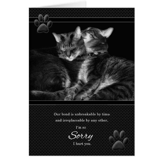 I'm Sorry Please Forgive Me Tabby Cats Card