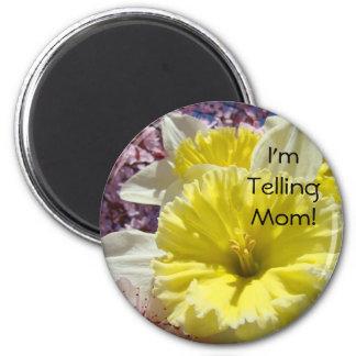 I'm Telling Mom! Funny Magnets Spring Daffodils