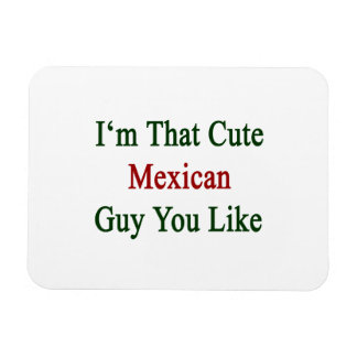 I'm That Cute Mexican Guy You Like Rectangular Photo Magnet