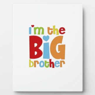 IM THE BIG BROTHER DISPLAY PLAQUES
