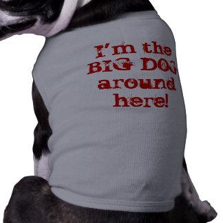 I'm the BIG DOG around here! Shirt